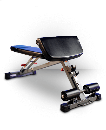 XMark Fitness XMark Ab, Hyperextension and Preacher Curl Weight Bench