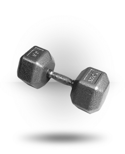 York Barbell Pro Hex Dumbbell With Cast Ergo Handle 65 lb