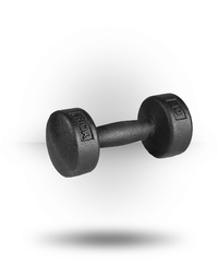 York Barbell Legacy Solid Round Professional Dumbbell 10 lb