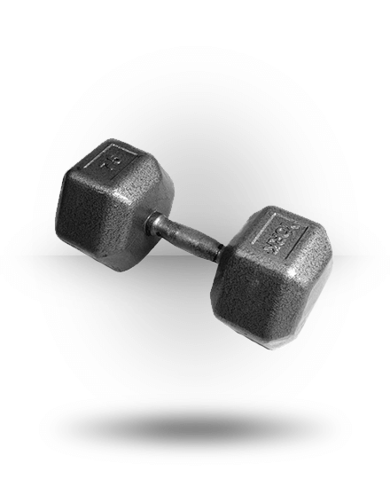York Barbell Pro Hex Dumbbell With Cast Ergo Handle 75 lb
