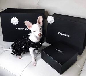 Pearl Black - Furbaby Couture