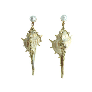 Alana Sea Shell Earrings