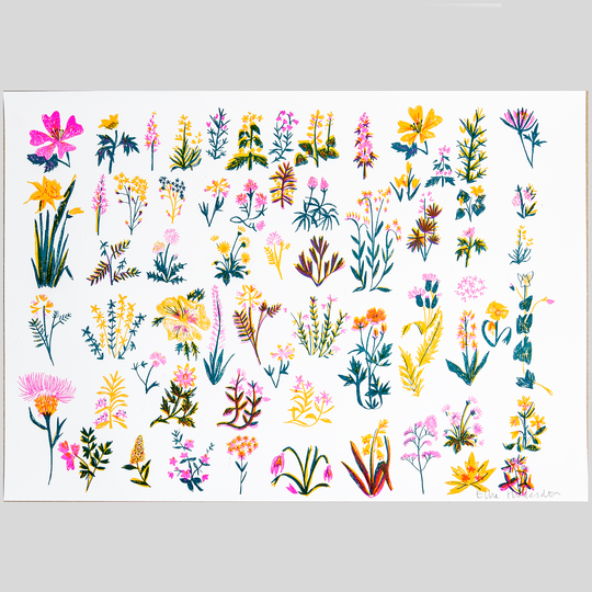 Riso Print - Wildflowers