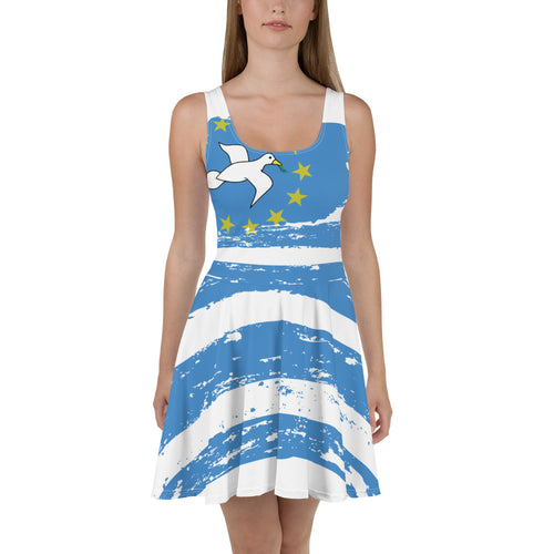 Ambazonia Skater Dress