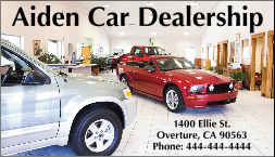 Car Dealership Magnetic Signs & Business Cards-Custom Printed