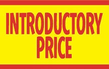 Introductory Price Shelf Molding Tags-100 pieces