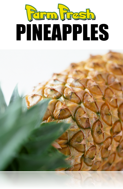 "Produce- Pineapple Poster-36""W x 48""H"