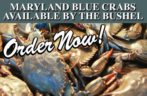 "Maryland Blue Craw Crabs Hanging Sign 32""W x 24""H"