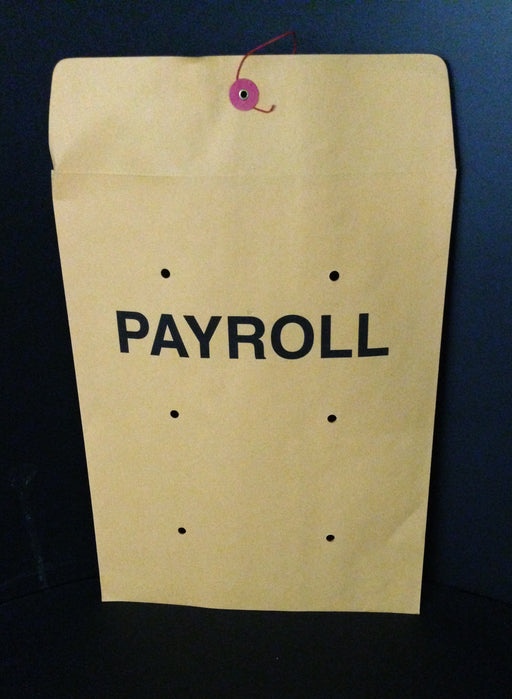 "Payroll Envelopes-10""x13"""