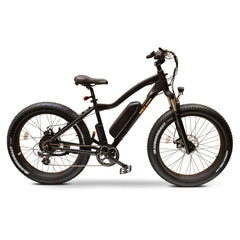 E-Wheels BAM Nomad Electric Power Bike