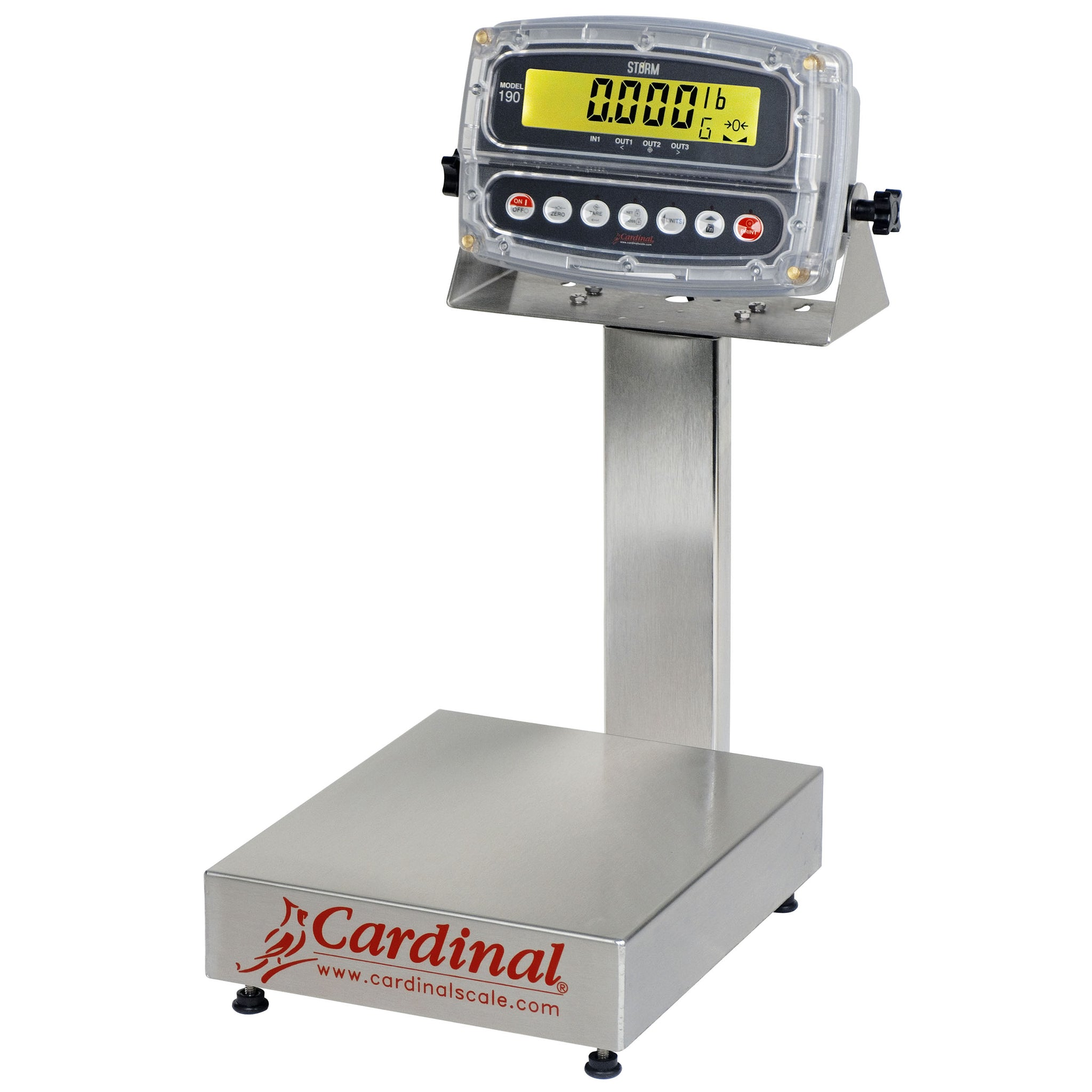 Cardinal EB-190 Series Bench Scale