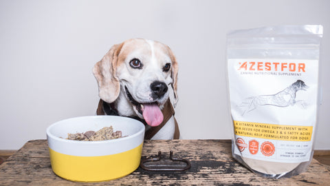 DIY grain free dog food venison and lentils