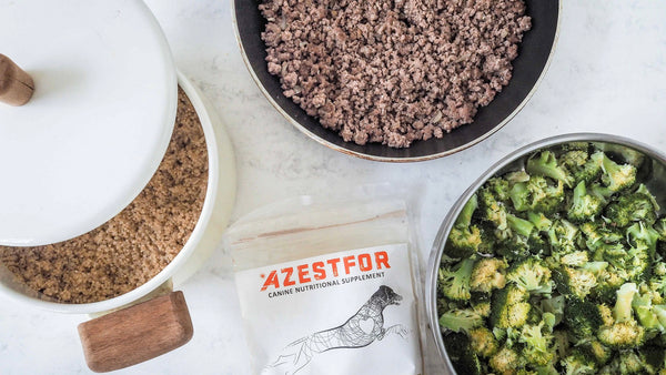 combine cooked quinoa, beef, broccoli when cooking for your dog