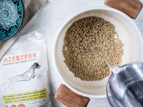 homemade grain free dog food with lentils