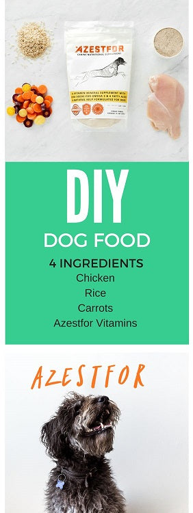Healthy homemade dog food recipes azestfor pinterest healthy homemade dog food recipes forumfinder