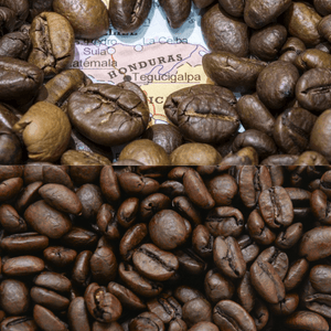 Honduran - Fresh Roasted