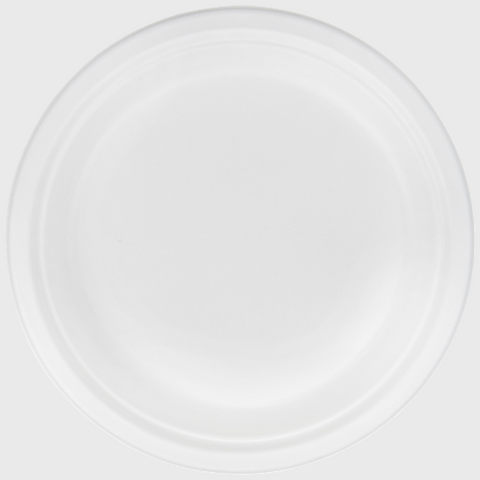 "Biodegradable Paper Plate 9"" - 500/Case"