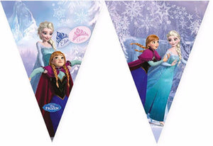Frozen party flag banner