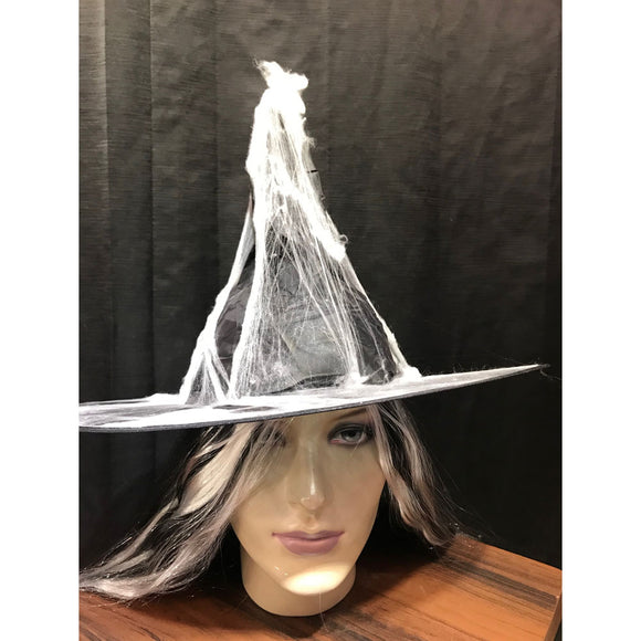 Witch Hat (With Net/ Web)