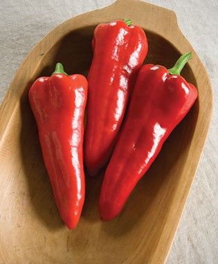 "Peppers, Red Sweet ""Italian Carmen""- organic"