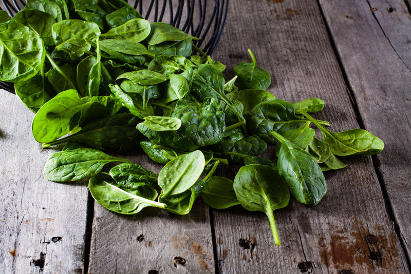 Spinach, Bloomdale- Organic