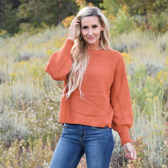 3Brunettes Billowy Sleeve Sweater