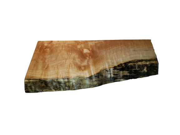 Live edge Western Maple