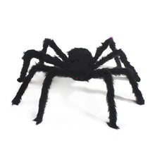 30/50/75cm Scary Spider