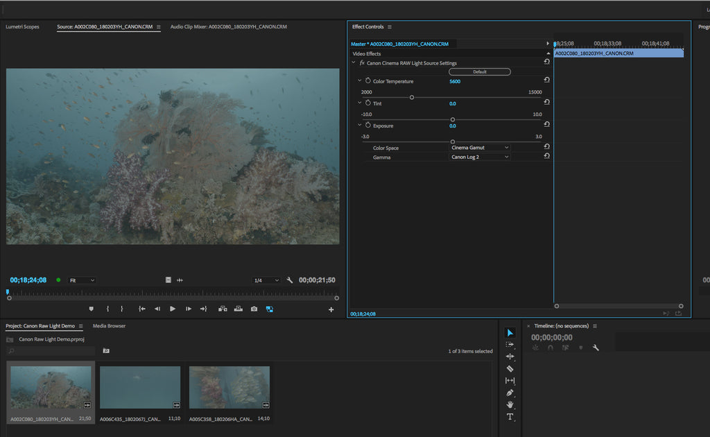 Adobe Premiere Pro CC | Canon Cinema RAW Light Support Added