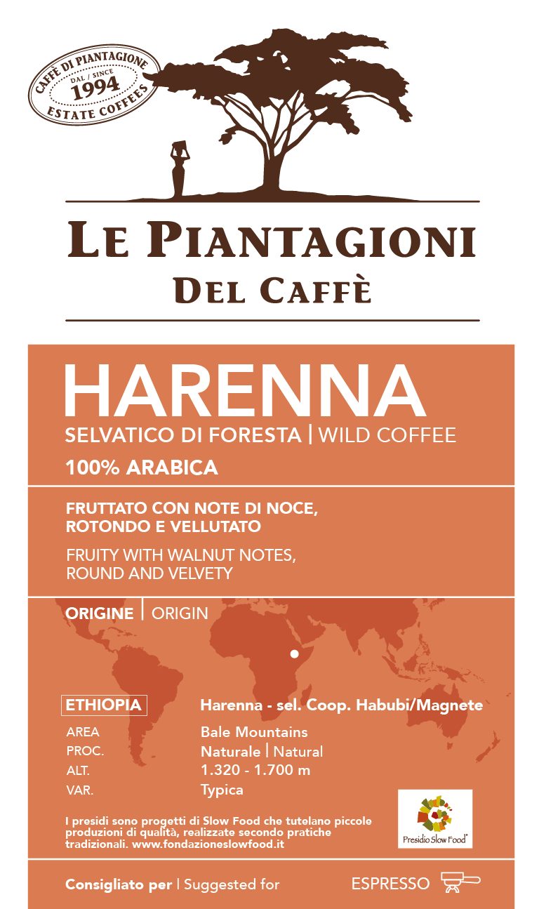 Harenna - Single Origin 100% Arabica coffee beans from Ethiopia Slow Food Presidium (250g/8.8oz) …