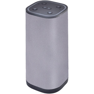 Supersonic Bluetooth And Wi-fi Speaker With Amazon Alexa (silver)