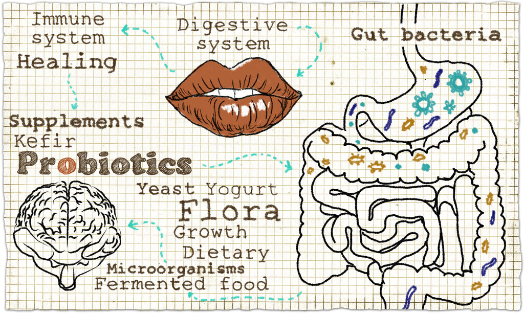 Did You Know Your Gut Has a Mind All of Its' Own?