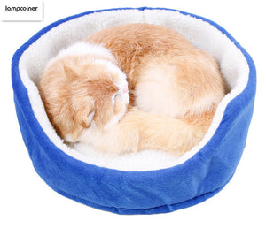 Small Cat Bed For Petite Cats