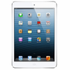 iPad Mini 2 (Retina) Replacement Parts