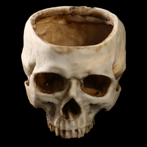 Skull Flower Pot Planter or Container