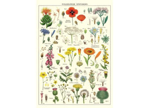 Vintage Style Poster Wildflowers