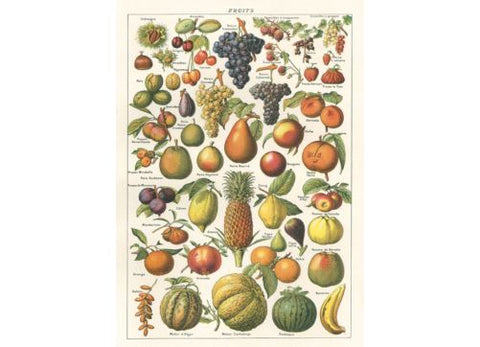 Vintage Style Poster Fruit