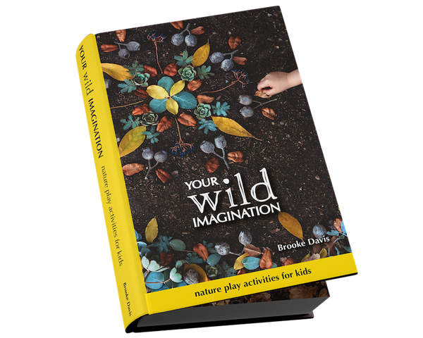 Your Wild Imagination Book