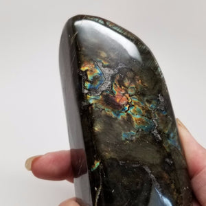 Freestanding Polished Labradorite
