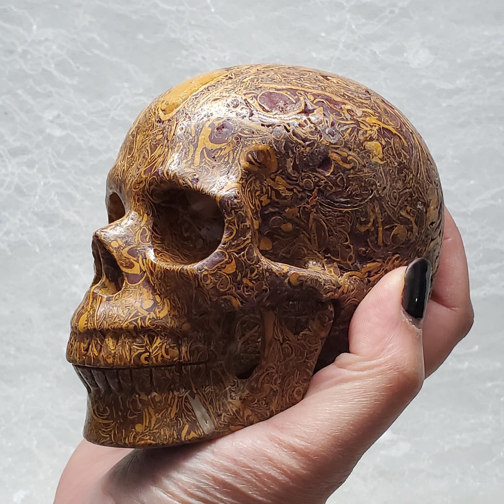 "5""Calligraphy Stone Anatomical Skull"