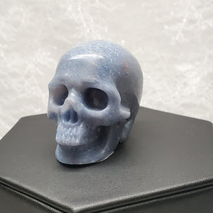 "2"" Blue Aventurine Anatomical Skull"