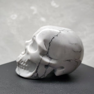 "2"" Howlite Anatomical Skull"