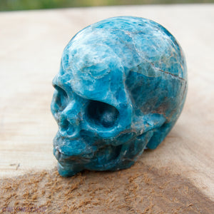 "Blue Apatite Carved 2"" Skull"
