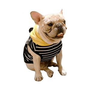 Yellow Submarine Black Stripe with Hoodie for French Bulldog or Pug Wear For Pet Frenchic