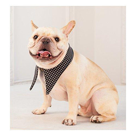 Frenchie Handmade Pet Clothing British style Reversible Detachable Fake Collar