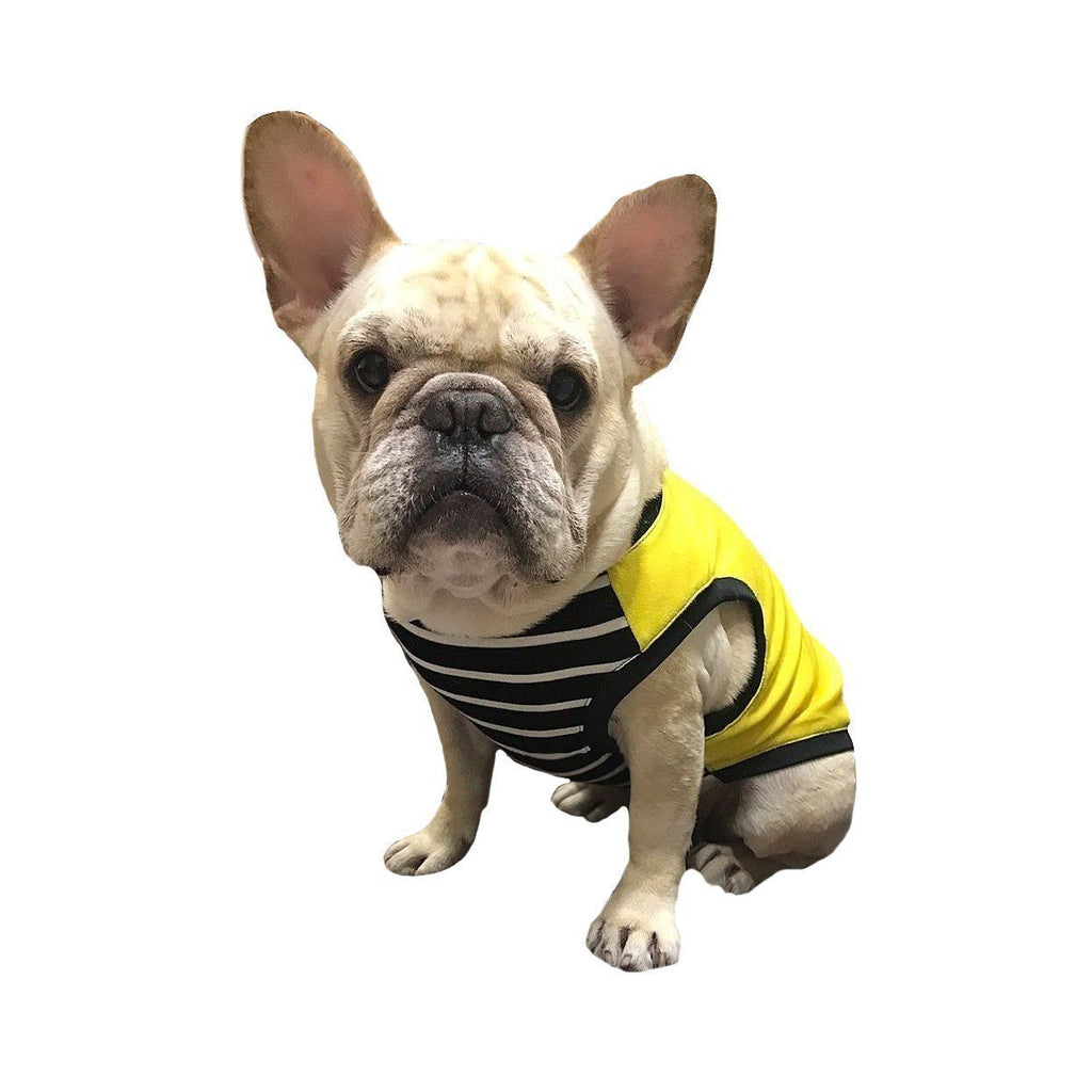 Frenchic Pet Clothing Sunflower Bright Yellow Color with Black and White Classic Stripe Dog Cloth for French Bulldog or Pug Wear For Pet Frenchic