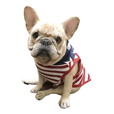 Frenchic Pet Apparel U.S. Stars and Stripes Hoodie for French bulldog or pug