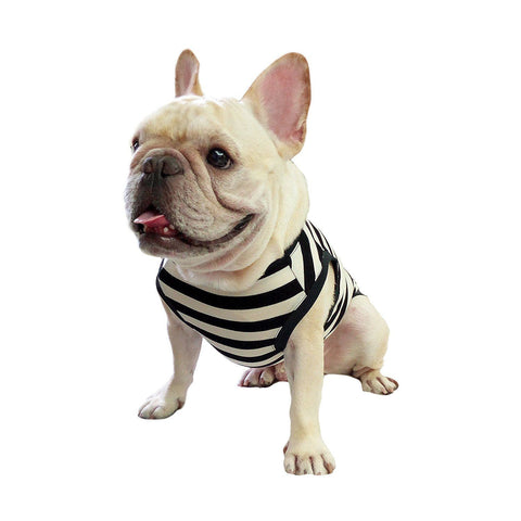Frenchie Pet Clothing Classic Elegant Black White Stripe for French Bulldog or Pug Wear Use Comfortable Fabric