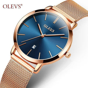 Luxury Waterproof Stainless Steel Ladies Quartz Calendar Wrist watch-Watch-Sour Grapes Online-