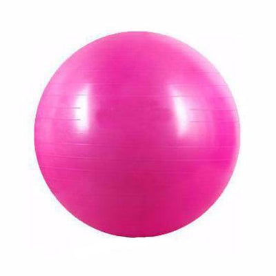Stability Ball - Cross Training Gear - Flexis Fitness